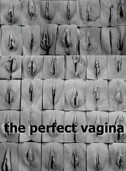 Most perfect vagina