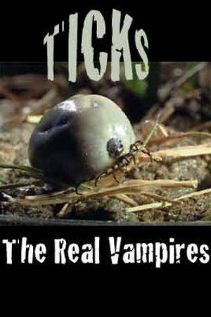 Ticks: The Real Vampires
