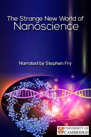 The Strange New World of Nanoscience