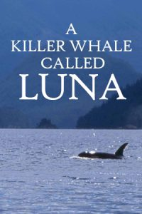 A Killer Whale Called Luna
