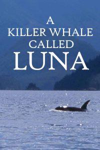 A Killer Whale Called Luna