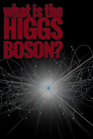 What is the Higgs Boson?