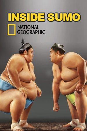 Inside Sumo