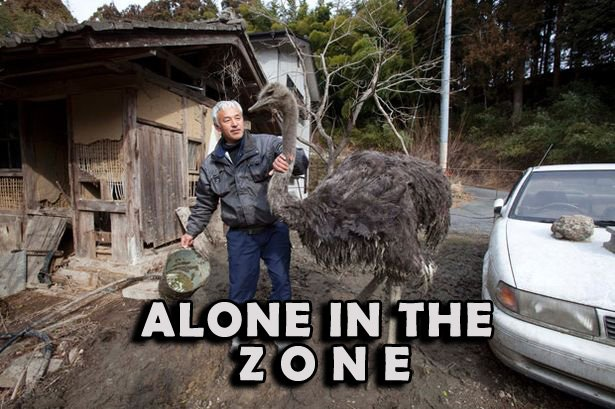 Alone in the Zone