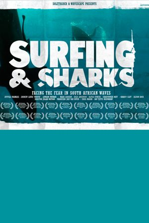 Surfing and Sharks