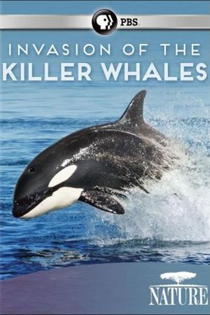 Invasion of the Killer Whales