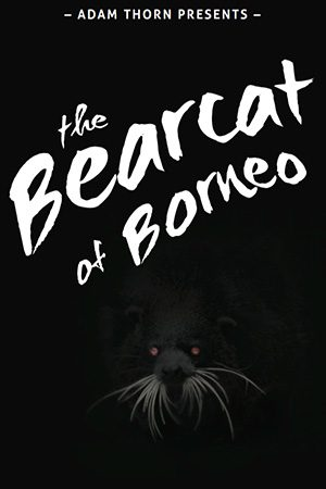 Adam Thorn Presents: The Bearcat of Borneo