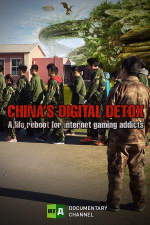 China's Digital Detox