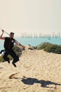 What is Kung Fu?