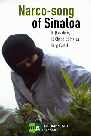 Narco-Song of Sinaloa