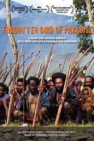 Forgotten Bird of Paradise