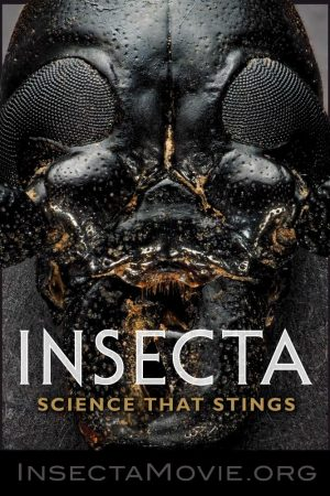 Insecta: Science that Stings